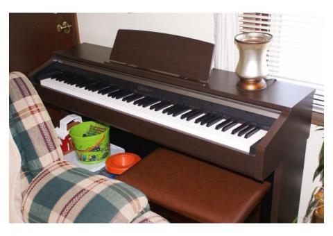 Cassio Celviano AP-220 Piano